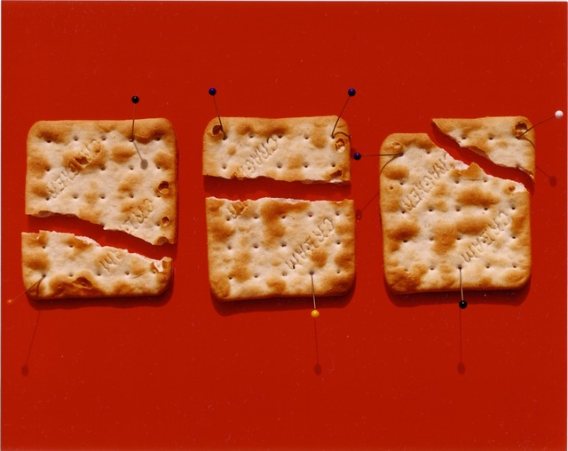 , 'Pinned Crackers,' 2001, Gallery Vassie