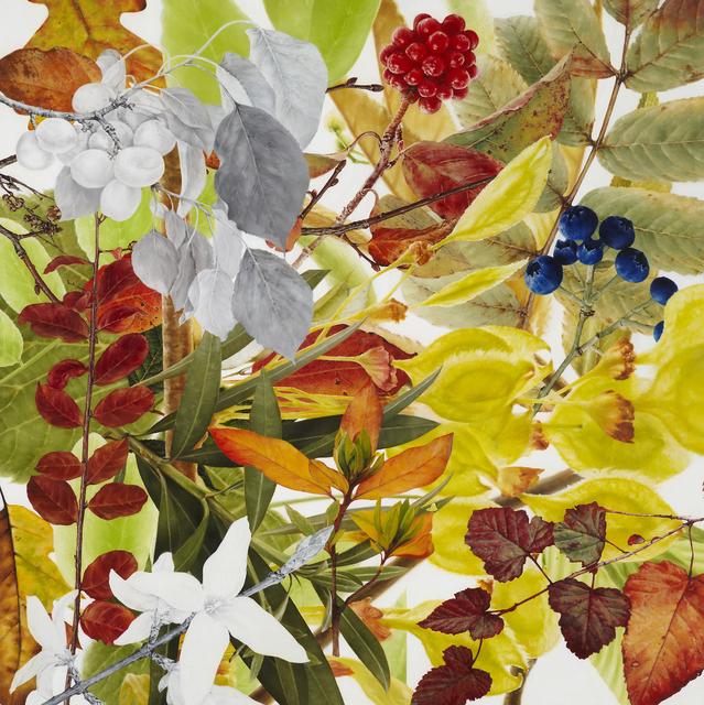 Soyoun Jeong, 'Neverland 17', 2014, Painting, Oil on canvas, Leehwaik Gallery