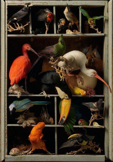 , 'Etranges Oiseaux,' 2018, Art Sablon