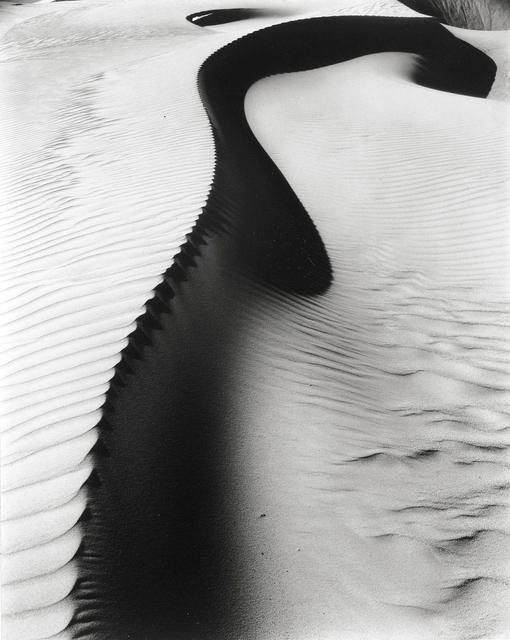 Brett Weston, 'Dune, Oceano  ', 1934, Holden Luntz Gallery