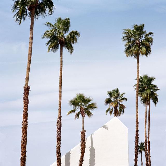 , 'Palm Springs,' ca. 2015, Lumitrix