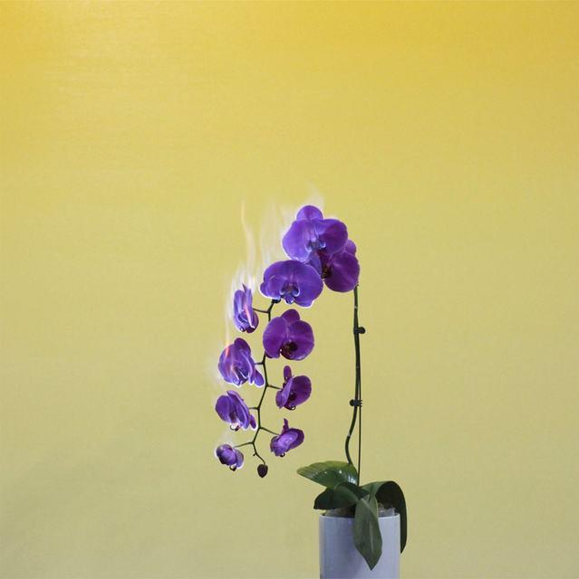 , 'Love Letter No.03,' 2011, Blindspot Gallery