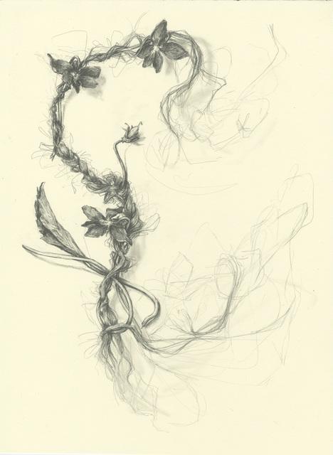, 'Heartsease two,' 2014, Resource Art