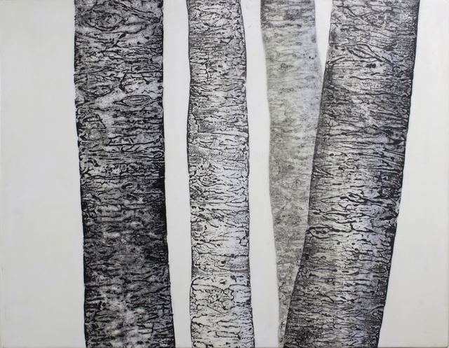 , 'Birch Family #1,' 2017, Novado Gallery