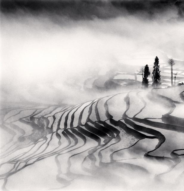 , 'Yuanyang, Study 1, Yunnan, China,' 2013, G. Gibson Gallery