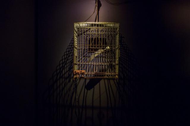 , 'cristo fue y guacamaya,' 2015, Empty Gallery