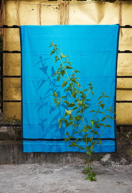 Flo Maak, 'Blue (Red Green', 2020, Photography, Pigment print in artist frame with museum glass, Bernhard Knaus Fine Art