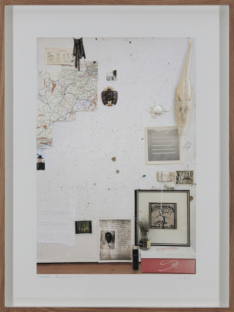 , 'Bloedboom (Wonderboom Series),' 2015, Barnard
