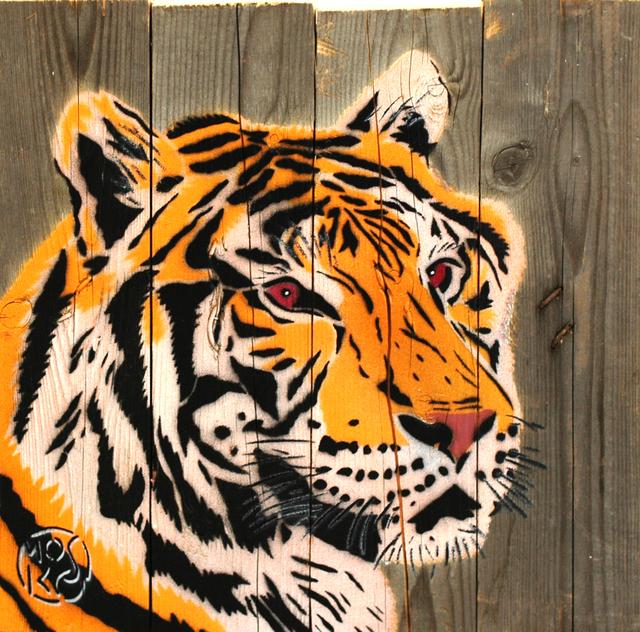 , 'Tigre,' 2016, Galerie Art Jingle