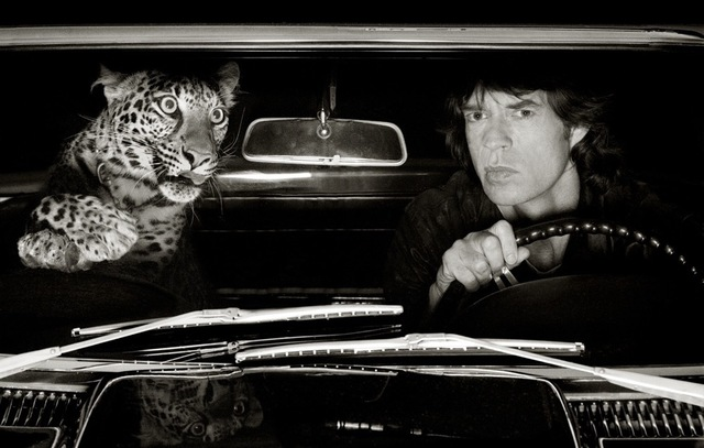 , 'Jagger and Leopard in Car, Los Angeles,' 1992, Opiom Gallery