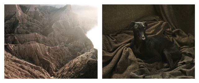 , 'Ravine & Galgo,' 2015, Adamson Gallery