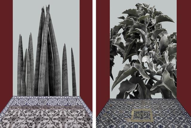 , 'Untitled,' 2015, Patricia Conde Galería