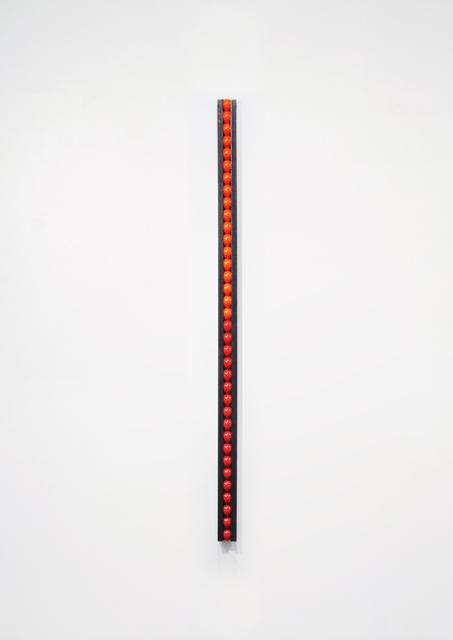 , 'True,' 2009, Flowers