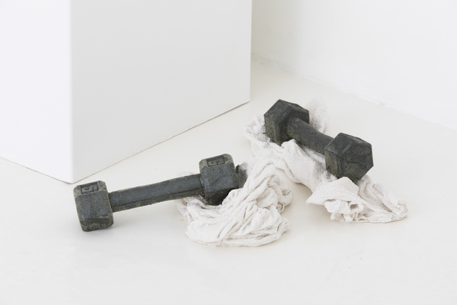, 'Hard Body | Soft System ,' 2017, Team Gallery