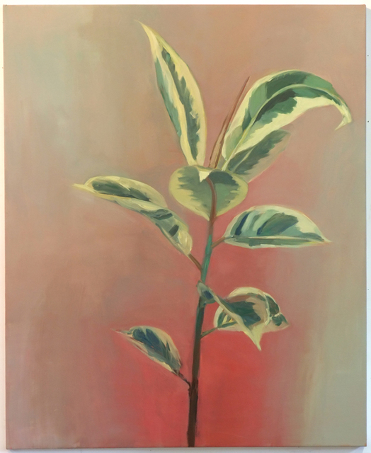 , 'Plant,' 2014, Birch Contemporary