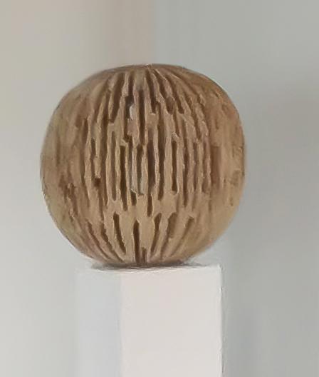 Urs P.-Twellmann, 'Linde Geöffnet Kugelförmig', 2014, GALERIE URS REICHLIN