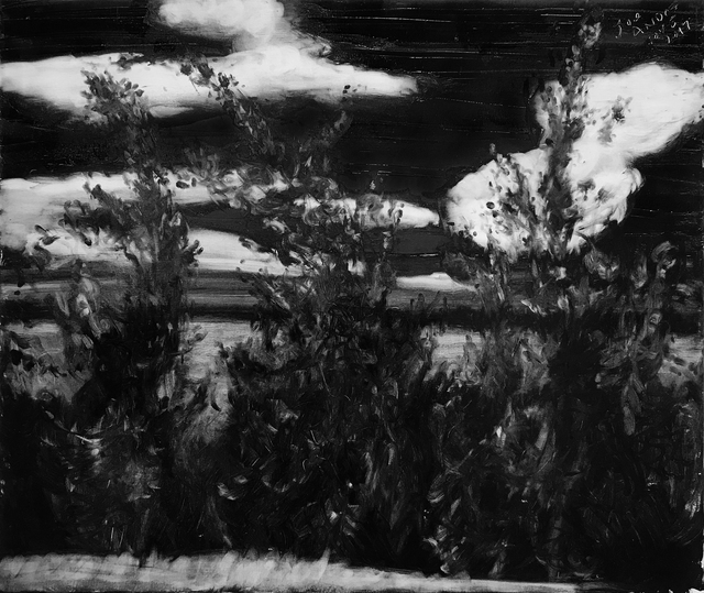 , 'Roadside Nov 5,' 2017, Galerie Sébastien Bertrand
