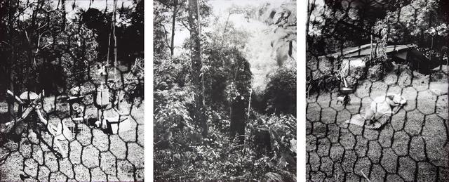 , 'ESTENOPEICAS RURALES - FAMILY RINCON - SAN LUIS DE OCOA,' , Dohyang Lee