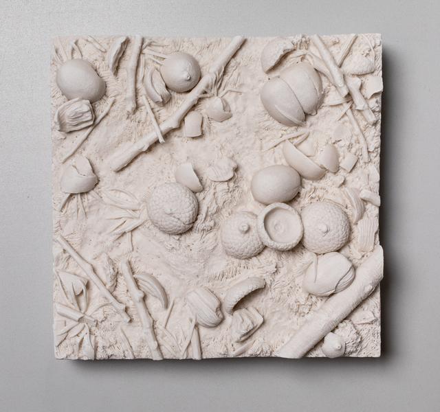 , 'Patch of Ground, Acorns,' 2019, Mindy Solomon Gallery