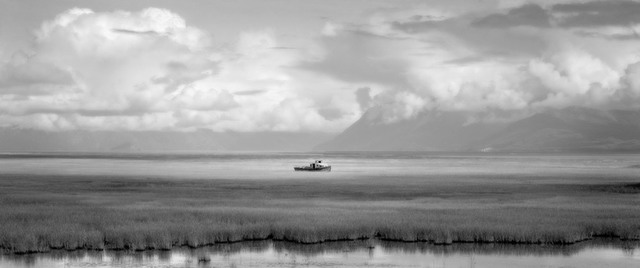 Brian Kosoff, 'Sea of Grass, Alaska', 2008, Photography, Silver gelatin print, Gallery 270