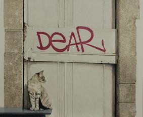 , 'Querido gato,' , Sala Parés