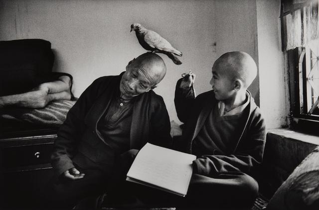 Martine Franck, 'Tulku Khentrul Lodro Rabsel, age 12, with his tutor Lhagyel. Shechen Monastery in Bodnath, Nepal', 1996, Phillips