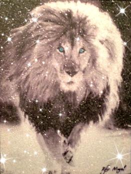 , 'LION STARE,' 2017, Eden Fine Art