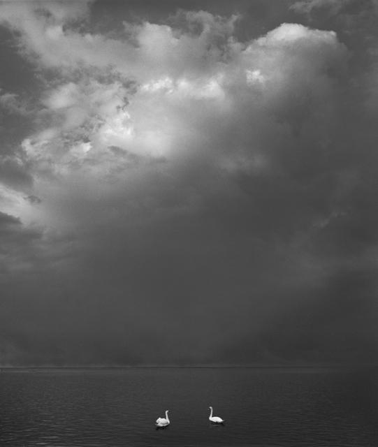 Pentti Sammallahti, 'Kirkkonummi, Finland', 2016, Photography, Gelatin Silver Print, Peter Fetterman Gallery