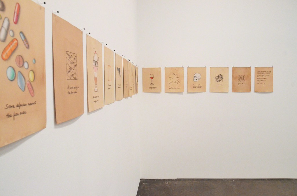 Installation view of Roberta Allen: Some Facts About Fear, MINUS SPACE, 2017