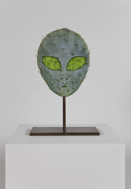, 'Alien Cactus,' 2015, 303 Gallery