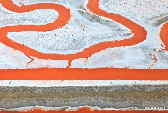 , 'Ode to Diebenkorn,' 2015, Forest & Ocean Gallery
