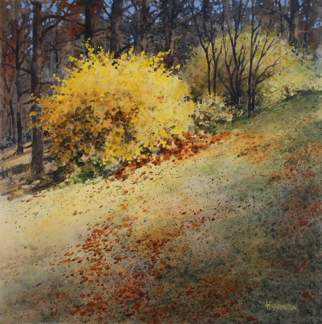 , 'Forsythia,' , Greg Thompson Fine Art