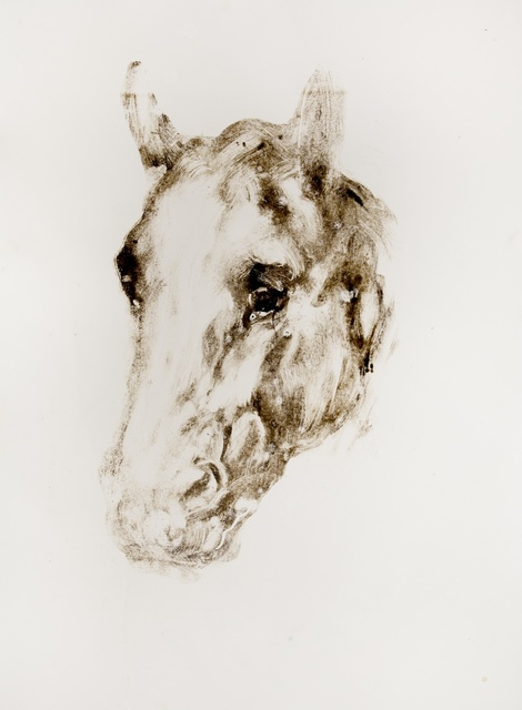 , 'Horse,' 2014, Flowers