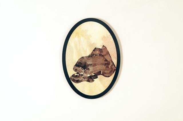 Ana Benedetti, 'Topografías', 2017, Mixed Media, Dibujo a lápiz sobre madera e impresión digital sobre acrílico, LA ARTE