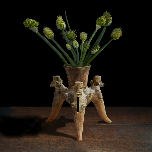, 'Allium in an Ancient American Tripod Vessel,' 2017, Galerie de Bellefeuille
