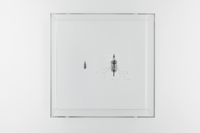 , 'Nucleodika,' 2016, Art Mûr