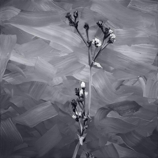 , 'Fleurs III ,' 2019, Galerie Bayart