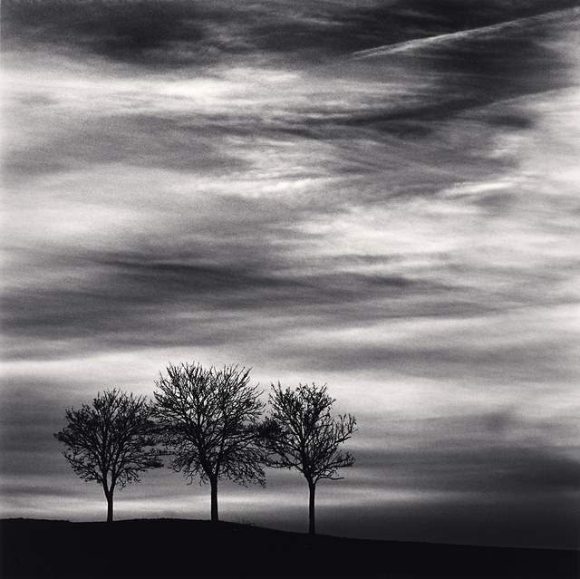 , 'Three Trees at Dusk, Fain les Moutiers, Bourgogne, France,' 2013, Robert Mann Gallery
