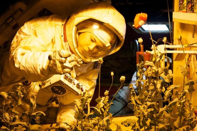 ", 'Installation view of ""Space Program: Mars"",' 2012, Tom Sachs Studio"