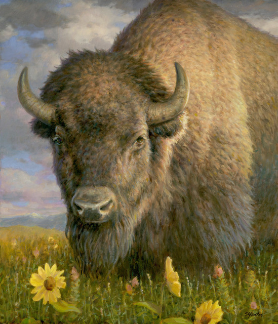 , 'Bison with Sunflowers,' , Davis Gallery & Framing