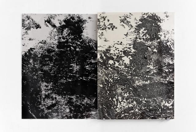 , 'Cómplices de todo II,' 2014, Mite