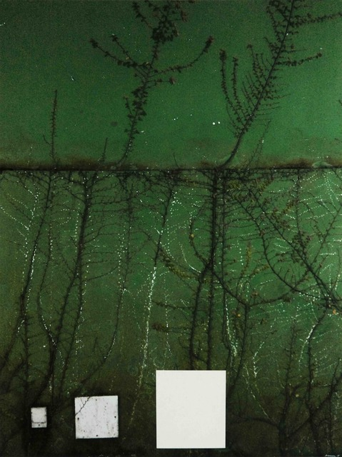 , 'Tropicalia 2,' 2016, Galerie Ron Mandos