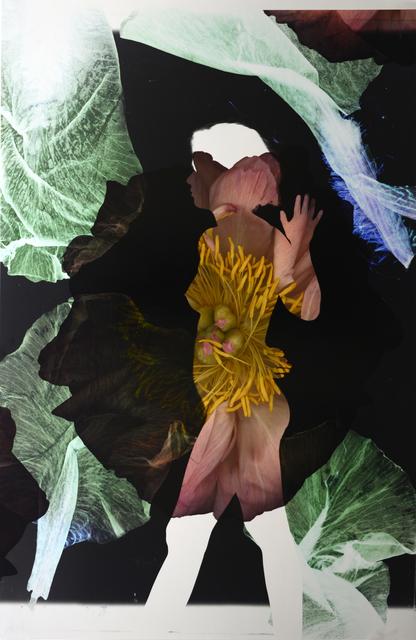 Baptiste Rabichon, '17eme-5', 2018, Photography, Unique chromogenic print, Galerie Paris-Beijing