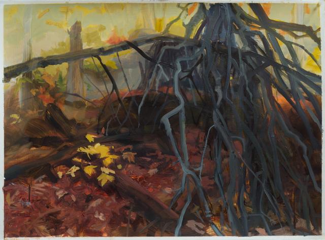 , 'Fallen Trees,' 2015, Inman Gallery