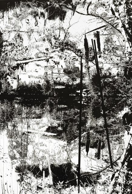 Yehudit Sasportas, 'Vertical Swamp Nr. 2', 2014, Galerie EIGEN + ART