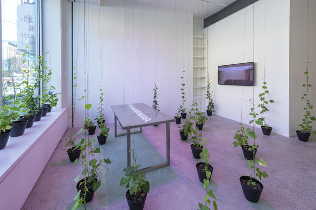 , 'Spirit Molecule,' 2018-2019, Fridman Gallery