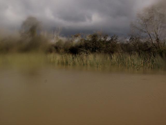 , 'Untitled (Delta serie),' 2013, Dacil