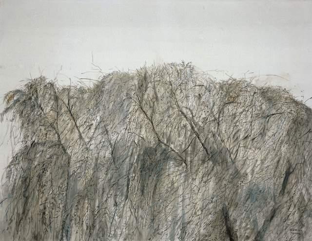 , '柳树之一 Willow,' 2016, Shanghai Gallery of Art