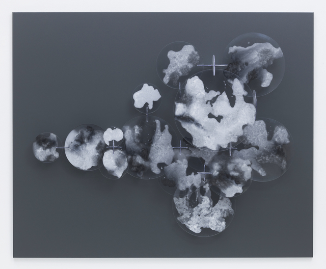 , 'Immaculate Conception of a Cloud II,' 2014, STPI