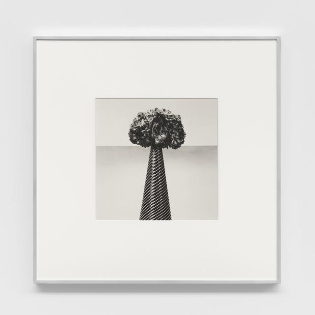 Robert Mapplethorpe, 'Carnations', 1984, Xavier Hufkens